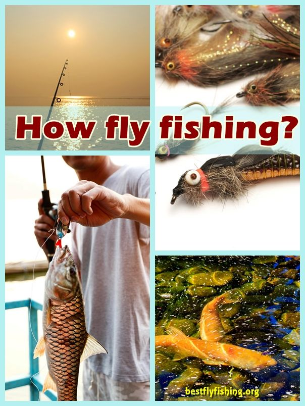 How fly fishing? Methods that you choose to fly fish will often depend upon where you are fishing, the season and even what the weather happens to be like at a particular time of day.