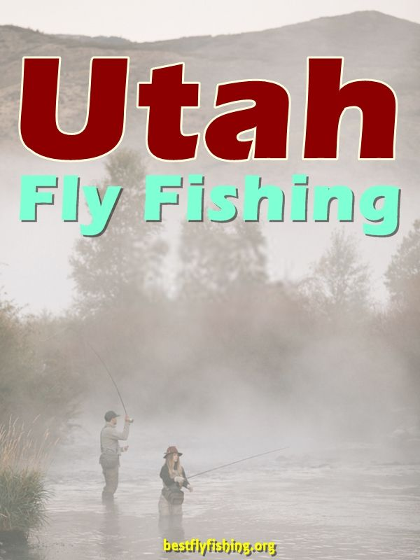 Fly Fishing Utah. Fly fishing in Utah can be an angler's paradise. #fishing