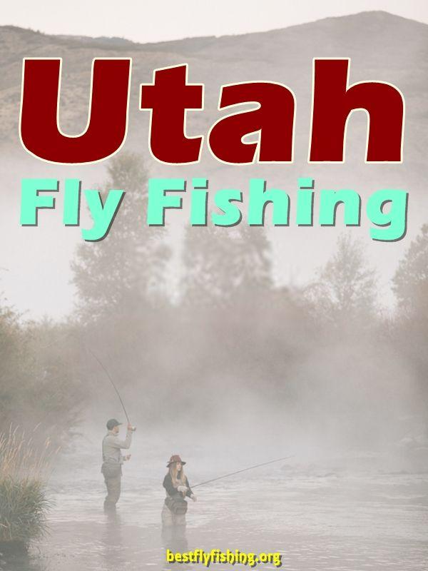 Fly Fishing Utah. Fly fishing in Utah can be an angler's paradise. #fishing
