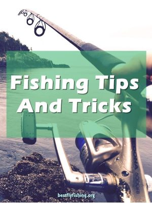 Fishing Tips. Can you think back to the excitement of catching your first fish? Maybe it was on a trip with your father or grandfather, or perhaps with your buddies at the cabin