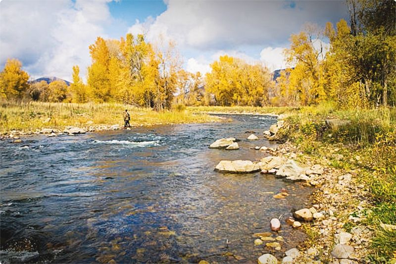 Fly Fishing Utah Guides. There's no doubt with numerous skilled anglers that the beautiful waters of the Provo River supply remarkable fishing and outside experience that is unmatched. #fishing